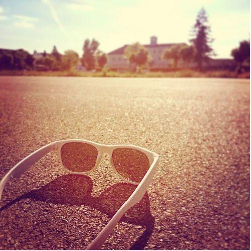 glasses sun sunglasses