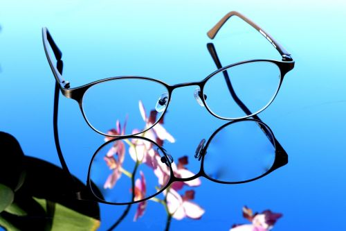 glasses orchid see
