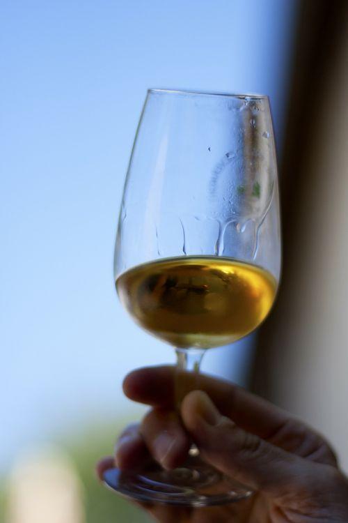 glasses drink wine