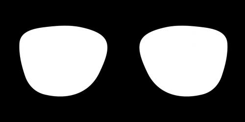 glasses sunglasses nerd