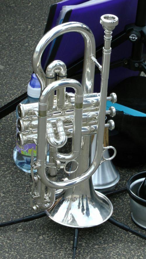 Gleaming Trumpet