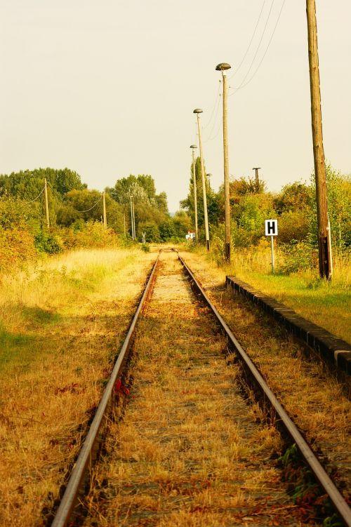 gleise rail traffic mystical