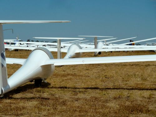 gliders competition racing