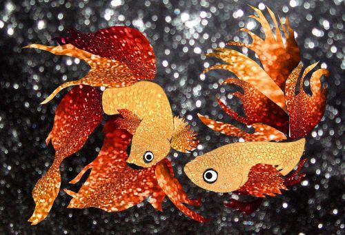 glitter goldfish glitter goldfish