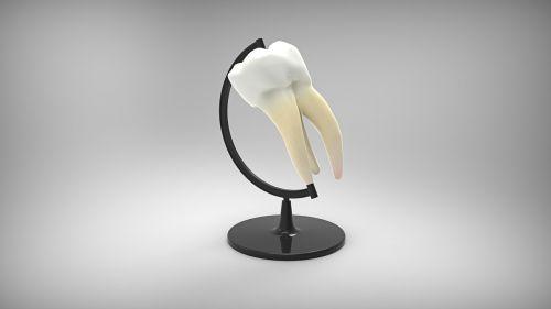 globus tooth dentistry