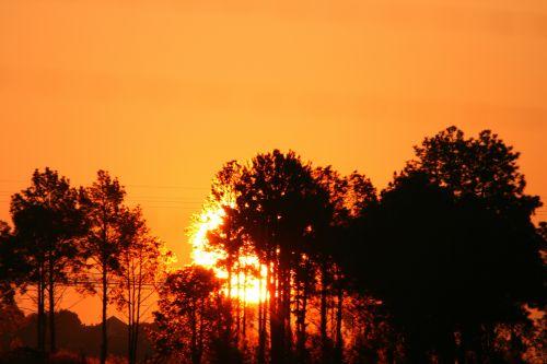 Glorious Sun Setting