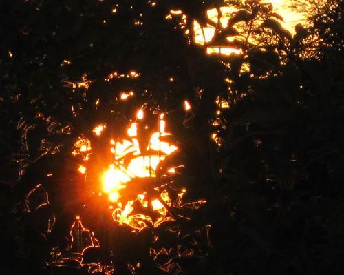 Glorious Sundown