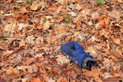 glove leaves missing