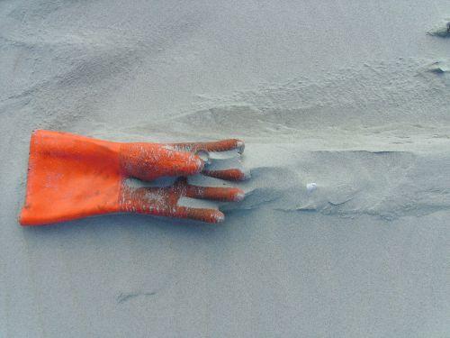 glove flotsam beach