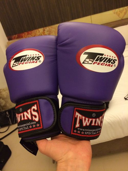gloves boxing ring