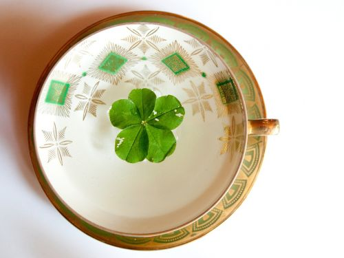 glückstee fünfblättriges shamrock symbol of good luck