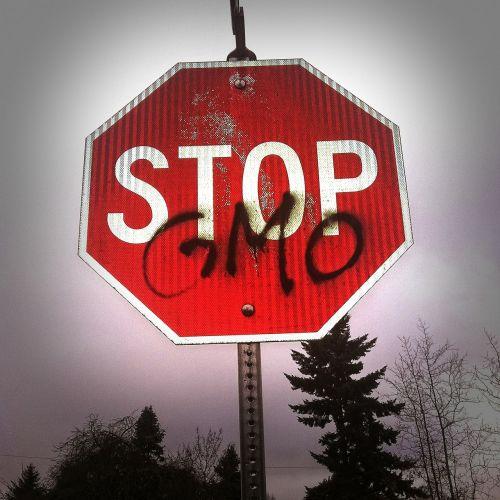gmo science stop