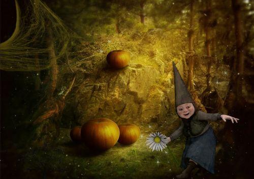 gnome fantasy forest