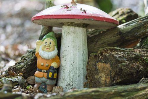 gnome mushroom forest