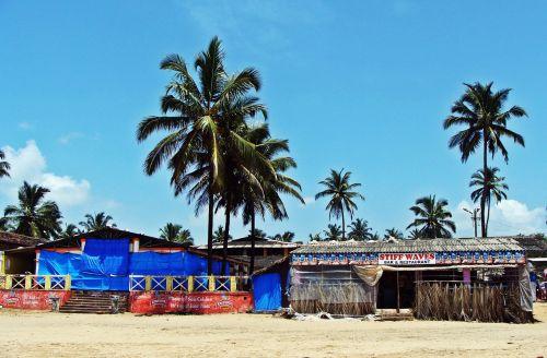 goa,bogmalo paplūdimys,arabų jūra,kokoso palmių,smėlis,Indija,šventė,jūra,palmės,gamta,egzotiškas,atogrąžų,tropinis,papludimys,smėlio paplūdimys