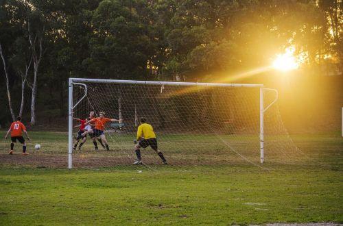 goalie goalkeeper soccer