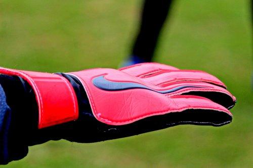 goalkeeper gloves  goalkeeper  gloves
