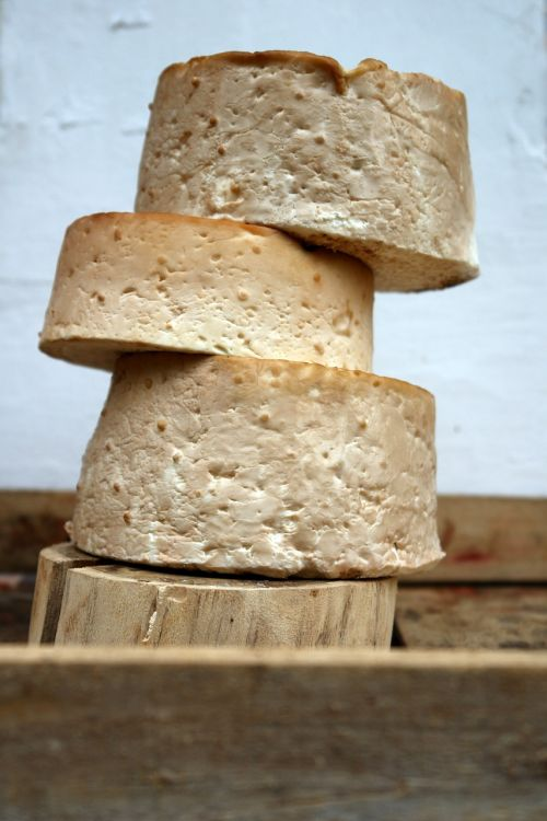goat milk product cheese