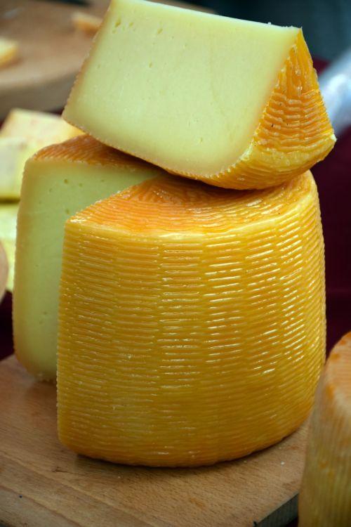 Ožkos sūris,karvės sūris,sūris,pienas,pieno,priėmimo,produktas,gamyba,natūralus,sūrio gamintoja,apdorojimas,industrija,kroatija