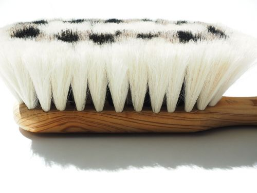 goat hair brush brush bristles