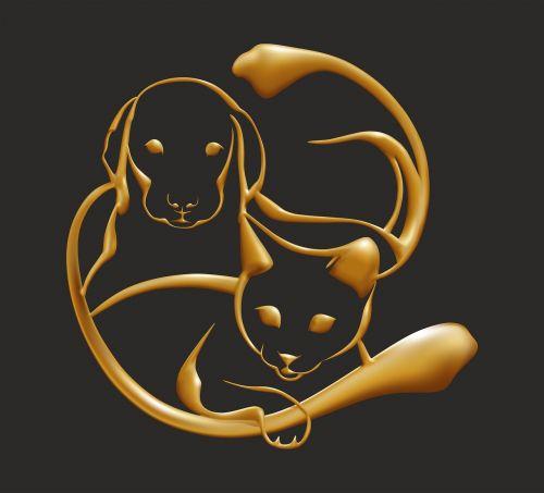 gold dog cat