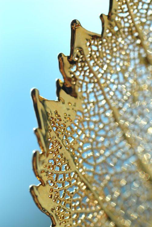 auksas,lapai,trapi,dizainas,gamta,auksinis,lapija,tekstūra