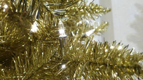 Gold Christmas Tree Ranch