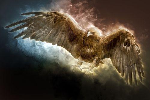 golden eagle eagle bird