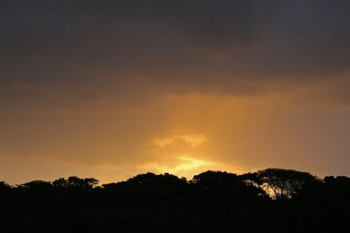 Golden Glow Of Sunset