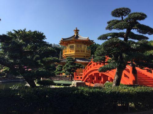 golden pavilion tang dynasty garden