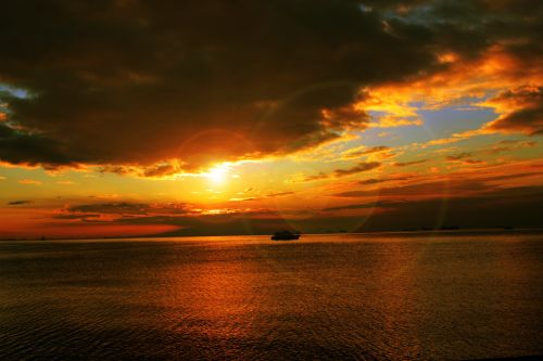 Golden Sunset Wallpaper