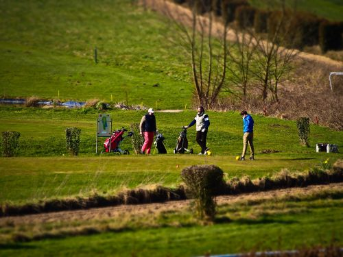 golf golfers green