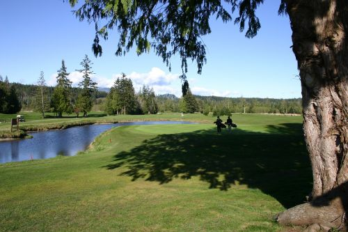 golf nature outdoors