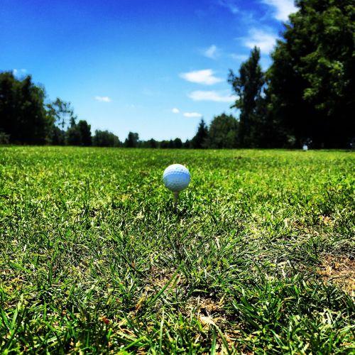 golf tee ball