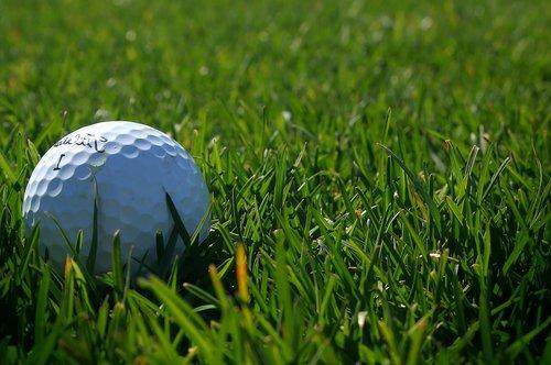 golf  green  ball