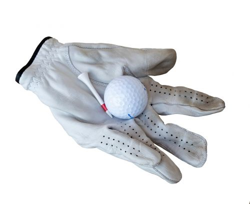 golf glove leather