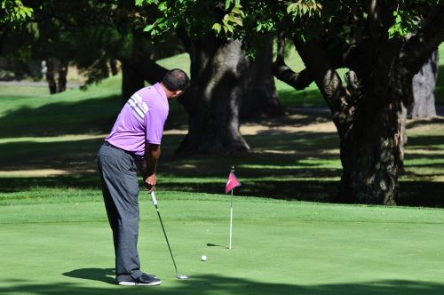 golfas,putt,golfas,golfo žaidėjas,įdėti žalią,vyras,golfo laukas,įdėti,lazda