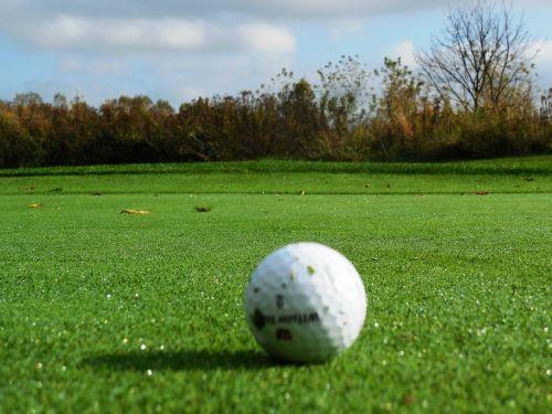 golf green golf turf