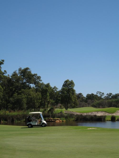 golf cart golf course buggy