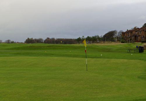 golfas, golfas & nbsp, Žinoma, golfas & nbsp, žalia, golfas & nbsp, teeing & nbsp, plotas, kraštovaizdis, peizažas, žalias, žolė, namai, pilka & nbsp, dangus, žiema, golfas & nbsp, vėliavos, & nbsp, žalias, golfo laukas
