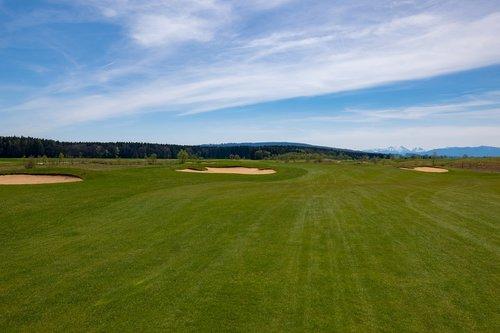 golf course  golf  fairway