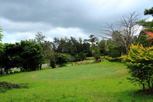 Golf Yard 2