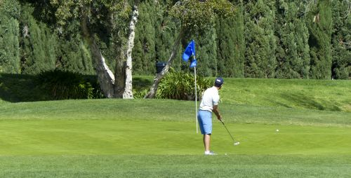 Golfer Looking After The Swing