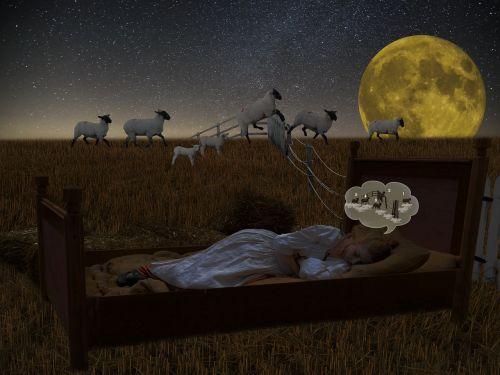 good night sleep fall asleep