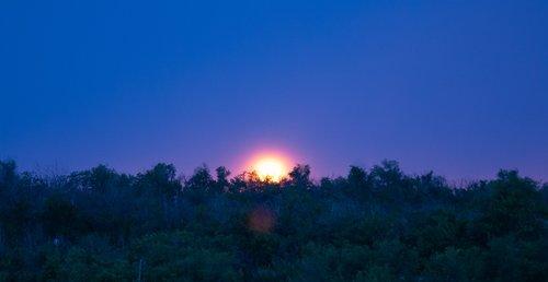 good night  evening  sunset