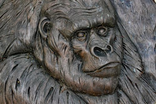 gorilla monkey carving