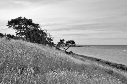 gotland sweden beach