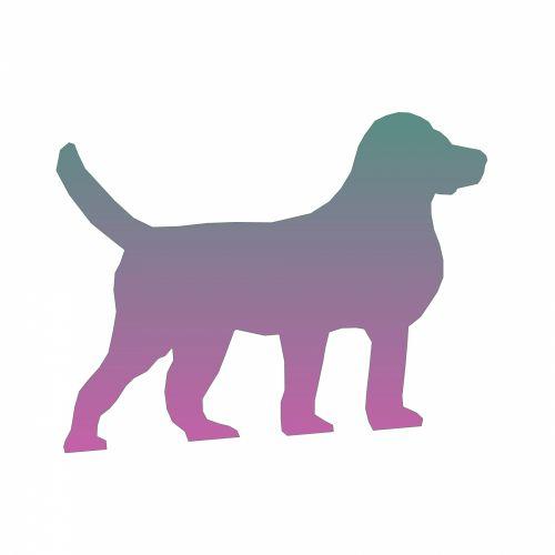 Gradient Dog II