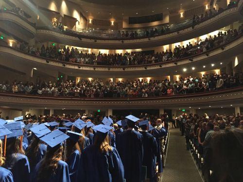 graduation graduation cap achievement