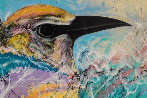 grafiti,spalvinga,grafiti siena,paukštis,Kipras,ayia napa